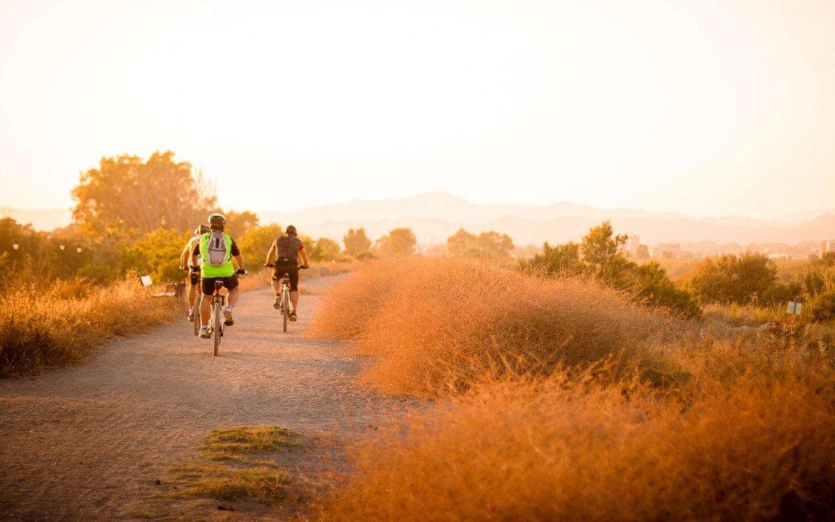 consejos-planificacion-ruta-bicicleta-amigos